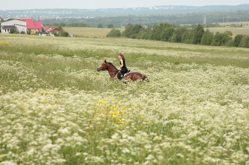 Катание в поле
